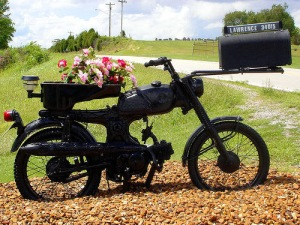 bike_mailbox
